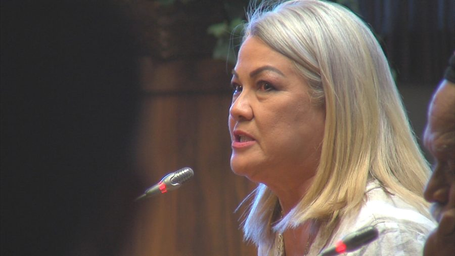 VIDEO: Testifiers Speak Out As Council Gets Mauna Kea Cost Update