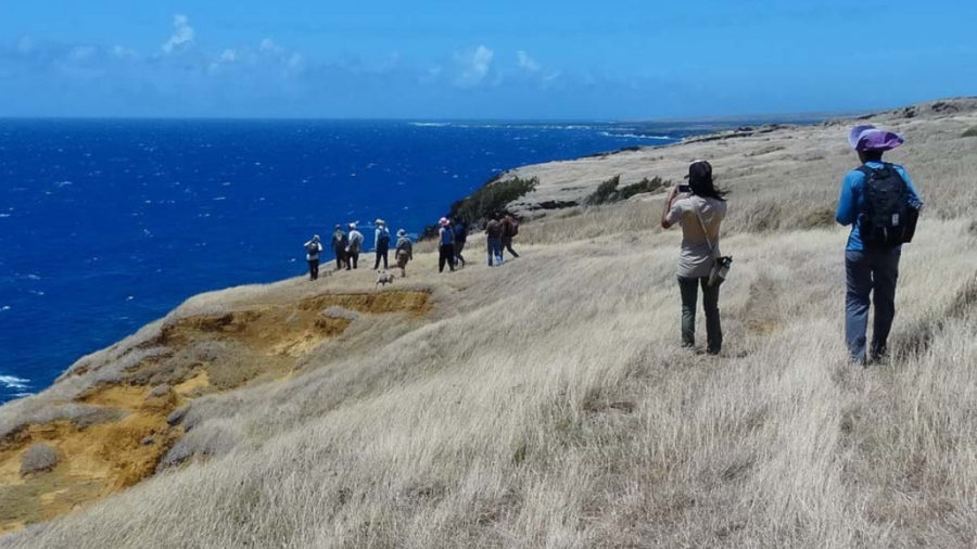 Kaʻū Lands Recommended For Legacy Land Conservation Grants