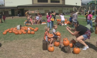 VIDEO: Waimea Fall Festival Attracts Thousands