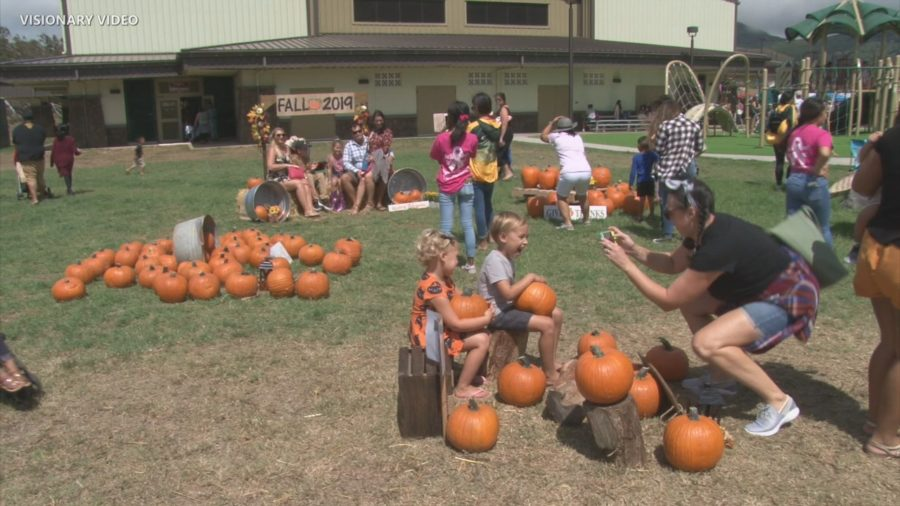 VIDEO: Waimea Fall Festival Attracts Thousands