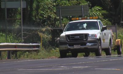 VIDEO: Hawaiʻi Council Considers Herbicide-Free Parks And Roads