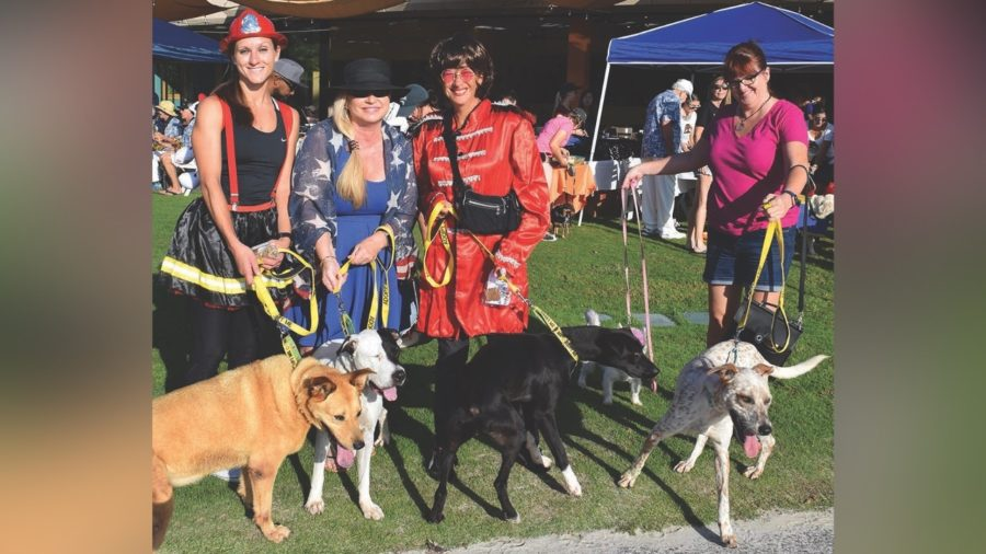 Howl'ween Events Planned For Hilo, Mauna Lani