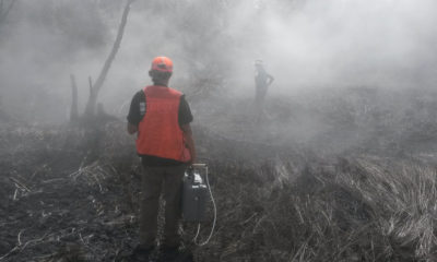 Scientists Monitor Gases On Kilauea Lower East Rift Zone
