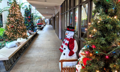 "Hawaii County's ""Magic Of The Season"" Set For Dec. 9 to Dec. 13"
