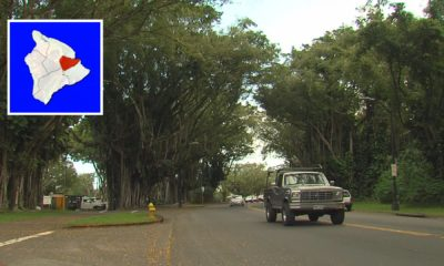 VIDEO: Banyan Drive, Kalanianaʻole Avenue Update