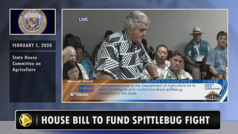 VIDEO: Bill To Combat Spittlebug Infestation Heard By House Committee