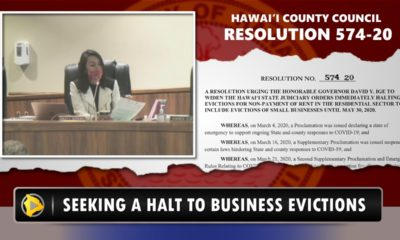 VIDEO: Council Wants To Halt Hawaii Small Business Evictions