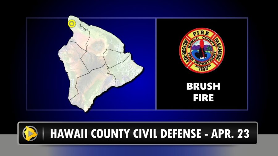 ALERT: Brush Fire Burns In North Kohala