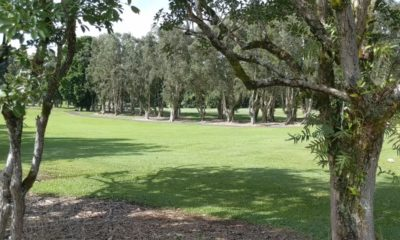 Hilo Muni Golf Course Reopening With Some New Rules