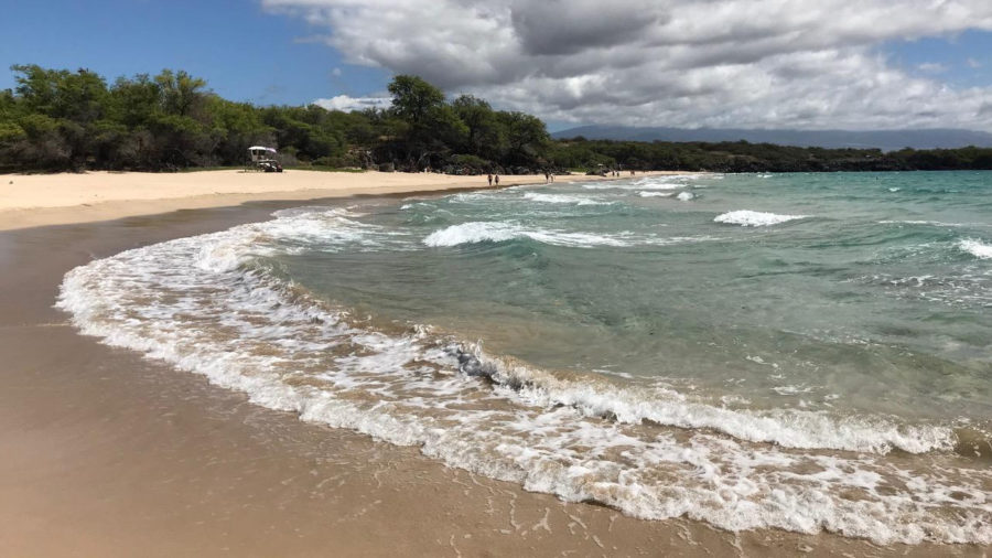 Kona Lawmaker Wants Coordination, Clarity On Beach Closures