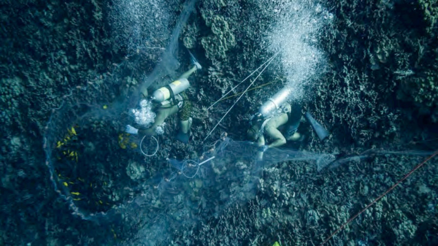 West Hawaiʻi Aquarium Fishery EIS Rejected