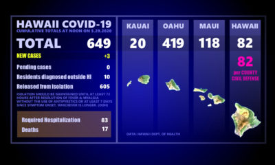 Hawaii COVID-19 Updates, May 29: 3 New Cases Statewide, None Active On Big Island