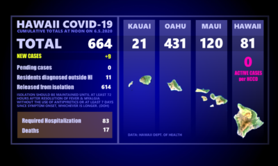 Hawaii COVID-19 Updates For Friday: 9 New Cases Reported