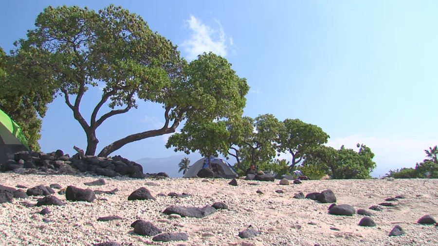 Hawaii County Online Camping Reservations Start June 29