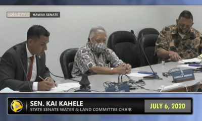 VIDEO: Hawaii Island BLNR Nominee Fails To Get Committee Support