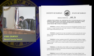 VIDEO: Council Votes To Help Small Businesses During Pandemic