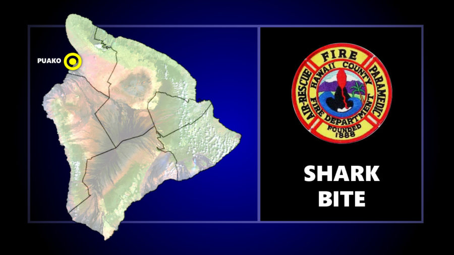 Shark Bite Reported Off Puako Beach