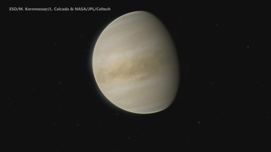 VIDEO: Signs Of Possible Life Detected On Venus