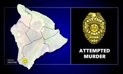 Attempted Murder Investigated In Hawaiian Ocean View Estates