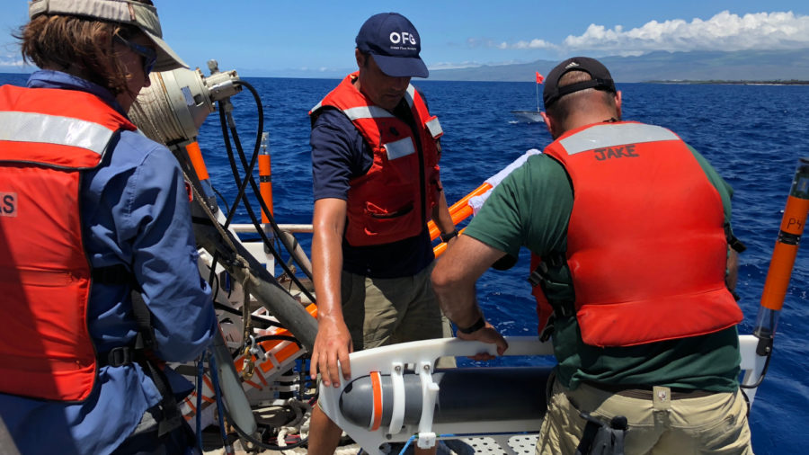 Study Shows Twice As Much Kona Submarine Freshwater As Previously Thought