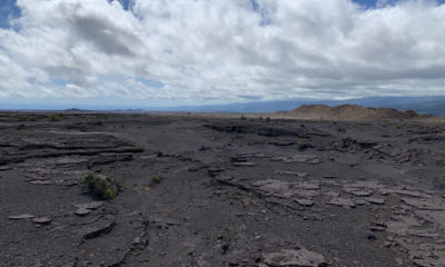 VOLCANO WATCH: Young Activity In Kilauea Southwest Rift Zone