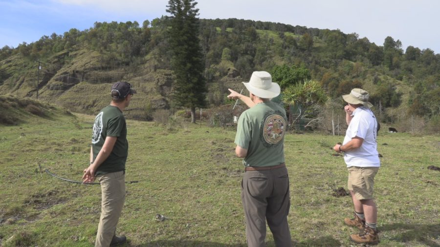 Clean-Up Planned For Puʻu Waʻawaʻa Forest Reserve