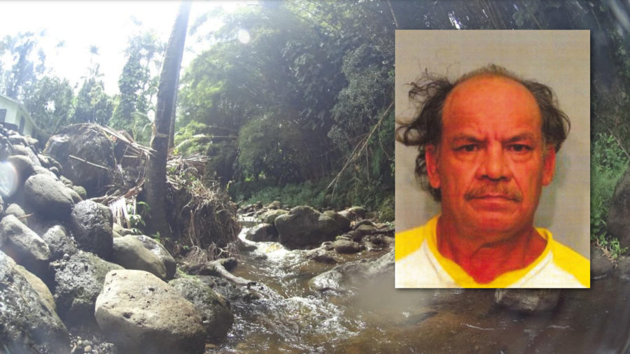 Man Fined $633k For Poisoning North Hilo Stream