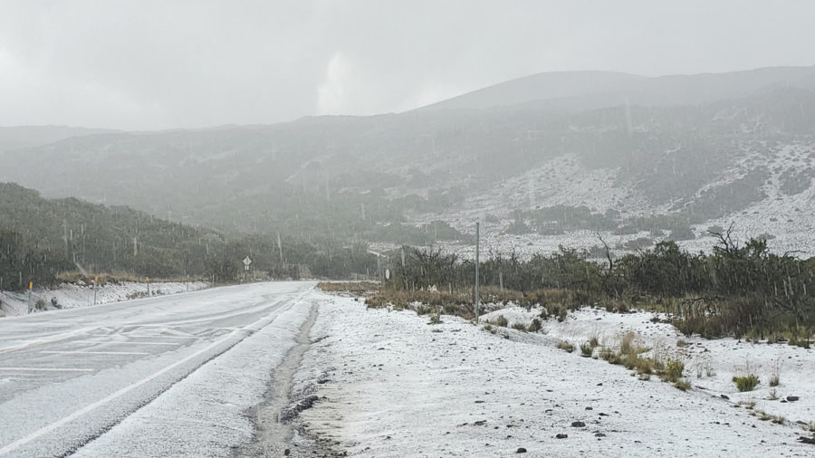 Sudden Snowfall Blasts Mid-Level Of Mauna Kea