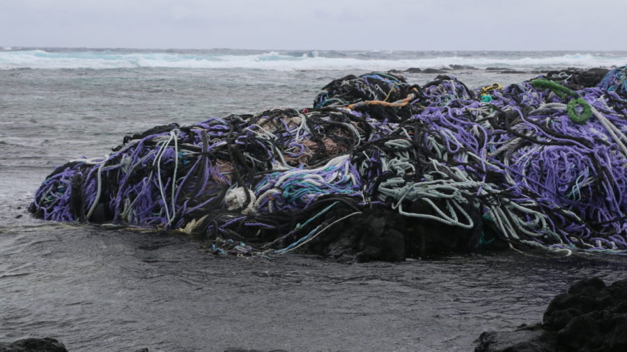 Hawaiʻi Has New Hotline For Reporting Marine Debris