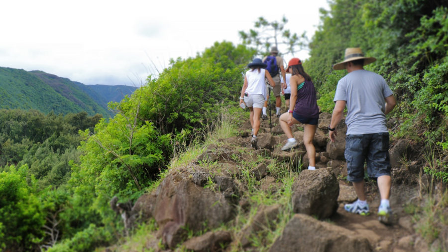 Program Aims To Mitigate Visitor Impacts at Pololu Valley