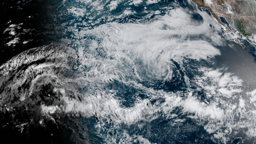 Storms Felicia, Guillermo Weaken To Remnant Lows