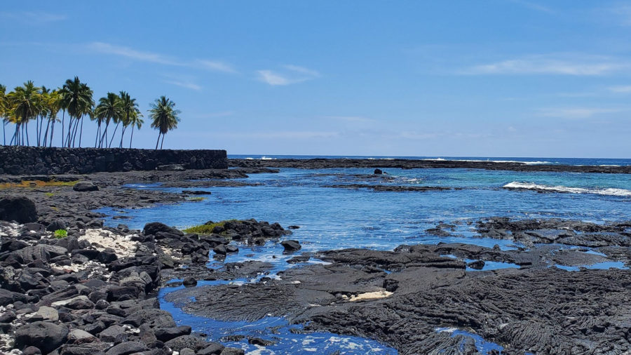 Pu'uhonua o Hōnaunau To Close August 11 For Goat Removal
