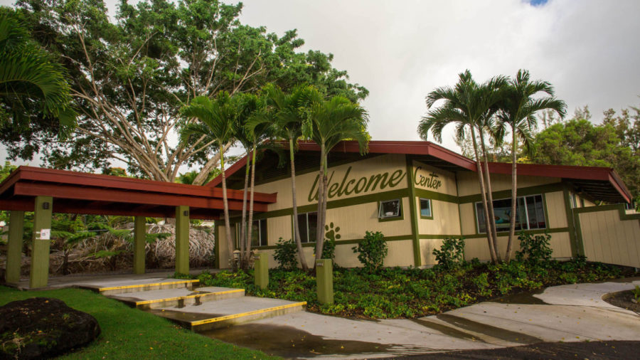 Animal Shelters In Kona And Keaʻau To Reopen In August